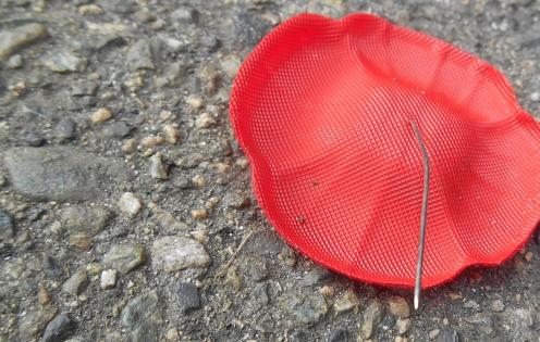 poppy-trash