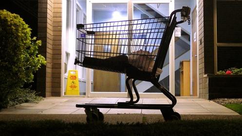 lost-cart