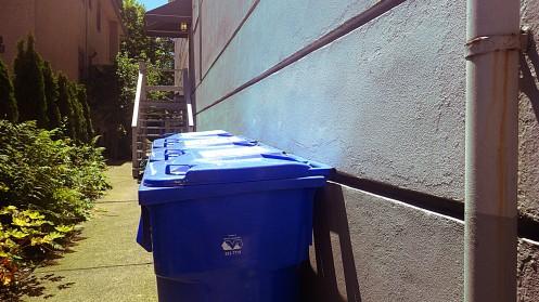 blue-bin-glare