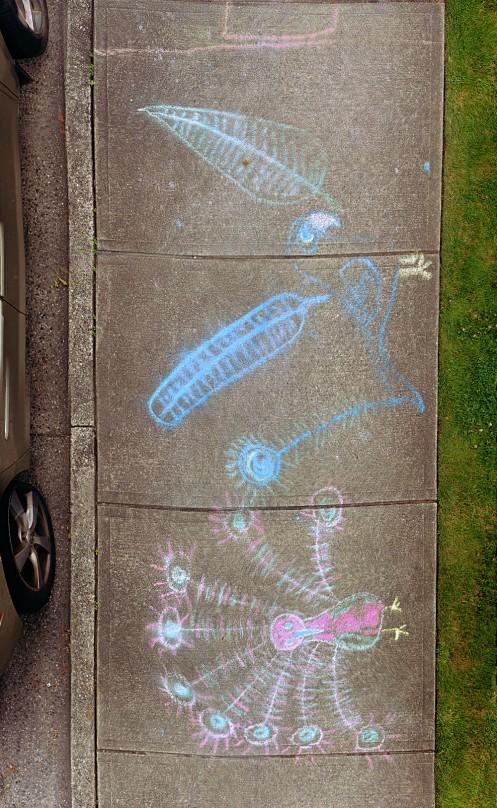 chalk-walk-04