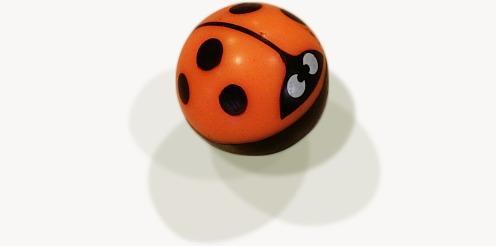 bouncy-ladybug