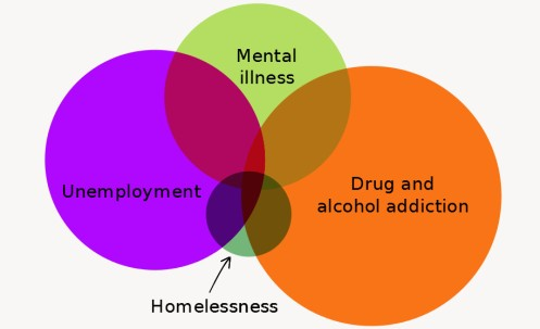 This Venn diagram is simply to sugest the overlapping factors that contribute to homelessness.