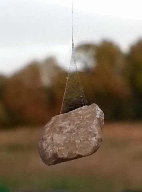 The small rock a spider suspended fro a web to anchor it. -- reverseLoop
