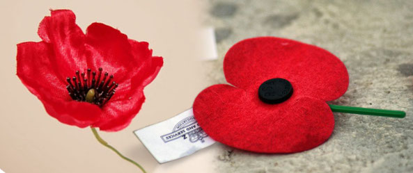 My annual appeal to remember and to replace the poppy sqwabb there are a world of poppies to choose from mightylinksfo