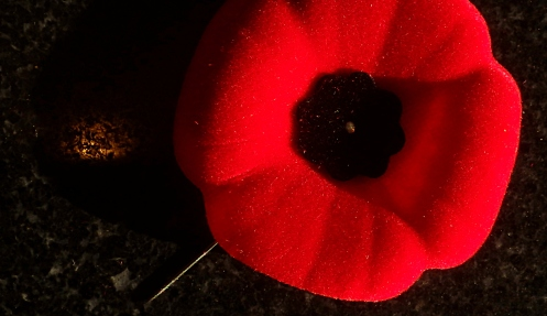 The modern Canadian Remembrance poppy.