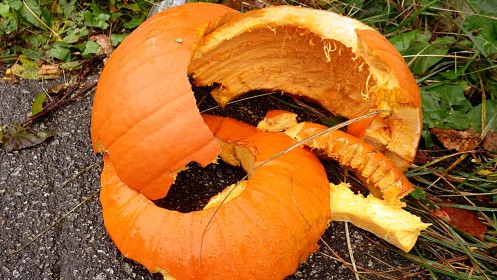 smashed-pumpkin