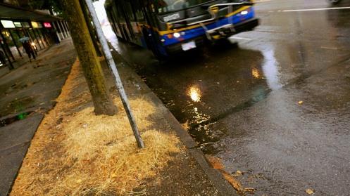 first-rain-since-03
