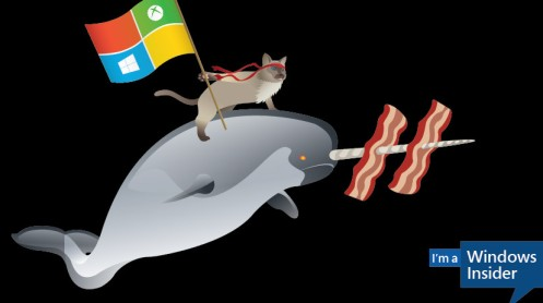 windows-10-insider-narwhal-crop