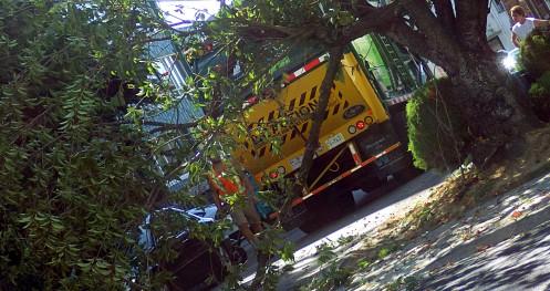 wm-truck-vs-tree-02