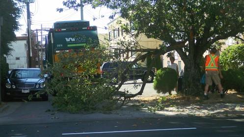 wm-truck-vs-tree-03