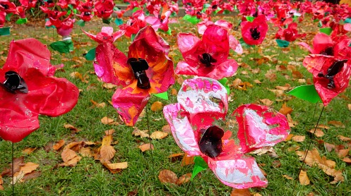 shaughnessy-school-poppies-2015-01