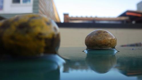 wet-stones-01