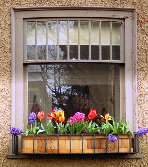 window-flower-box-2500-block-spruce