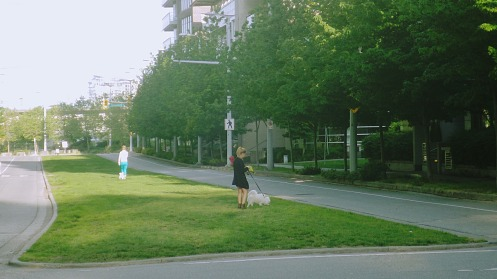 At 7:20 a.m. the sad sight of condo owners walking their toy dogs