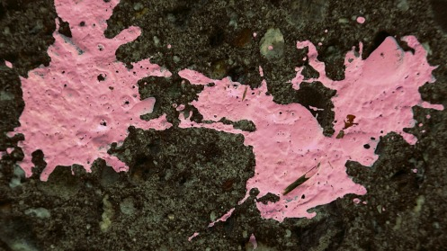 A small, harmless, pink paint spill—not to be confused with a big black oil spill.