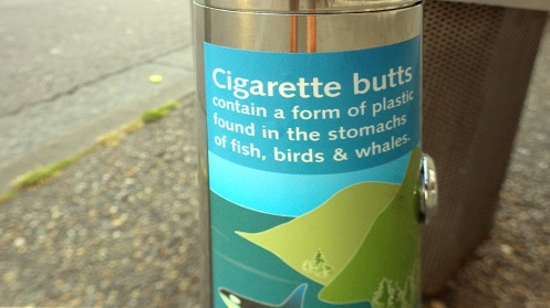 What a coincidence that cigarette butt plastic naturally occurs in fish!
