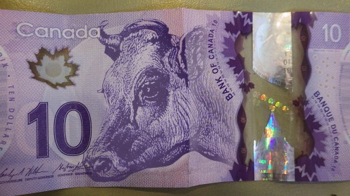 There's beef in Canadian polymer bills, in case you hadn't noticed.