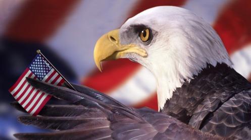 The eagle is downcast.