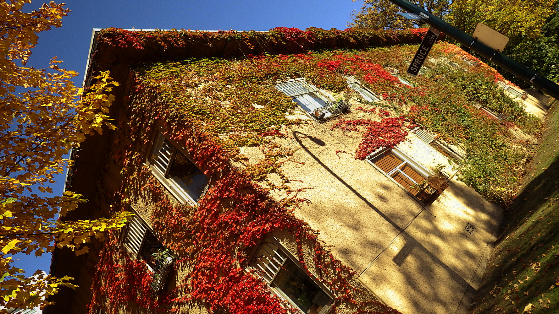 Autumn Leaves Apartments Vacaville Ca